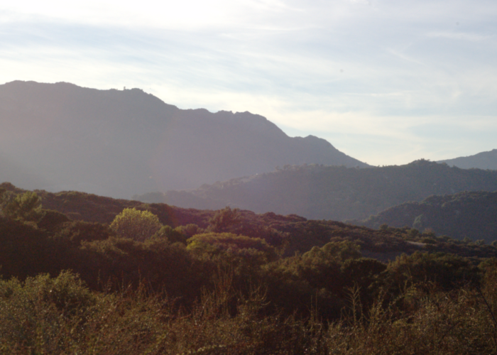 Topanga_Canyon_trail