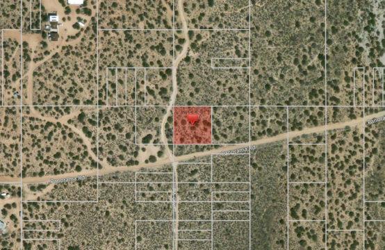 Camino Rd & 202 St. E – APN3062030021